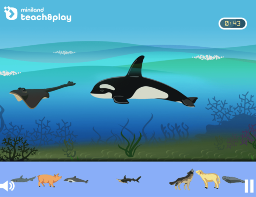 Which animals live in the sea?